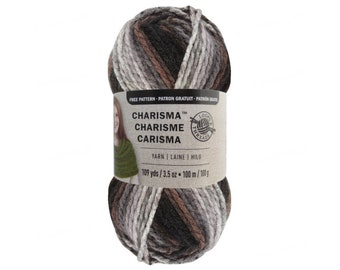 ASHES Bulky Charisma Loops and Threads Yarn. This Grey and Brown Ombre Yarn is 3.5oz 109yds. Thick Variegated Chunky Soft Acrylic Yarn.