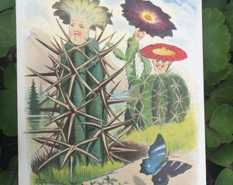 Vintage Postcard - Cactus Flower People - Illustration - Butterfly - Plants