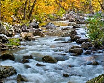 Nature Photography, Fall Foliage, Landscape, Creek, Stream, Richland Creek, Arkansas, Water, Trees, Yellow, Rocks