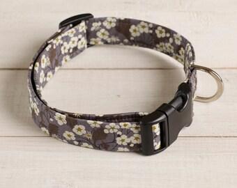Willow Liberty dog collar