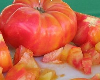 Mr. Stripey Bicolor Beefsteak Tomato, op/heirloom seeds. free shipping.
