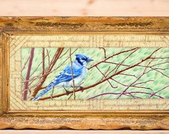 Rustic Blue Jay, Bird, Adirondack Bark, Original Colored Pencil Drawing Wall Art
