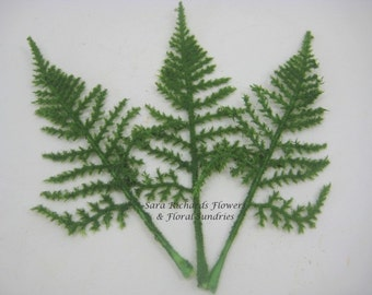 Pack of 10 Green Fern Leaves
