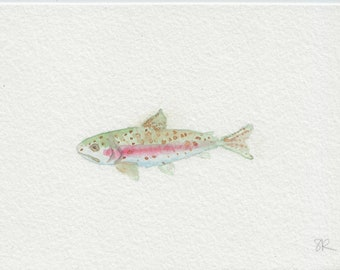 Rainbow Trout, Mini watercolor painting