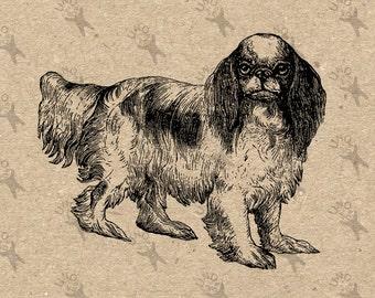 Retro image Cavalier King Charles Spaniel Dog Instant Download Vintage Digital printable clipart graphic Burlap Transfer Scrapbooking 300dpi