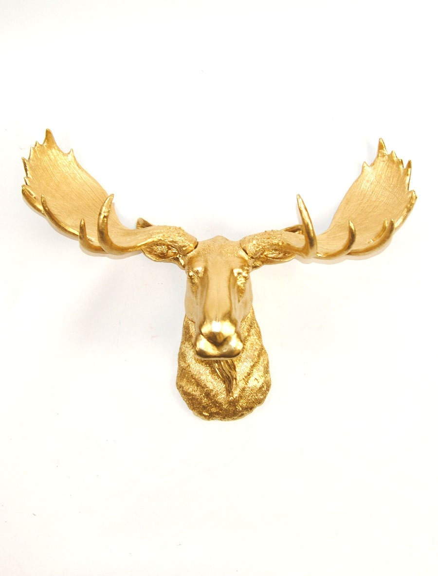 Faux Taxidermy Moose Head in Gold The Elcide Chic and