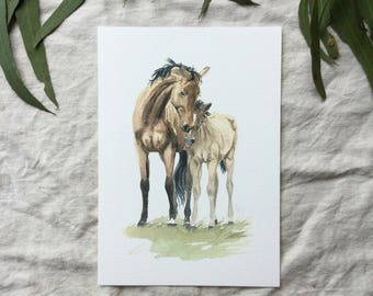 A5 Mare and Foal