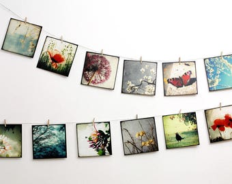 Set of 12 art postcards - set Nature 01