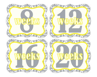 12 Weekly Pregnancy Mama-to-be Maternity Waterproof Glossy Die-cut Stickers  - Monthly stickers available - Design W004-02