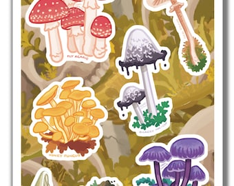 Mushroom sticker set - 6 illustrated vinyl mushroom species stickers / decal