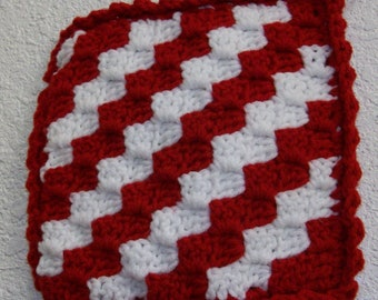 4244 Peppermint Twist Hot Pad