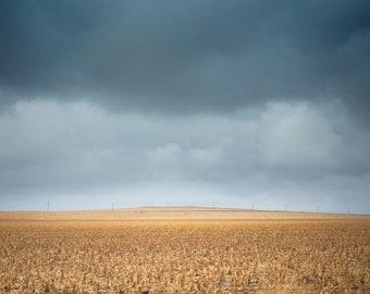 Colorado Prairie #3