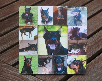 """Pet Memorial Frame, Personalized Pet Memorial Collage Picture Frame, Custom Cat Frame, Pet Collage Picture Frame 8"""" x 8"""", Unique Gift"""