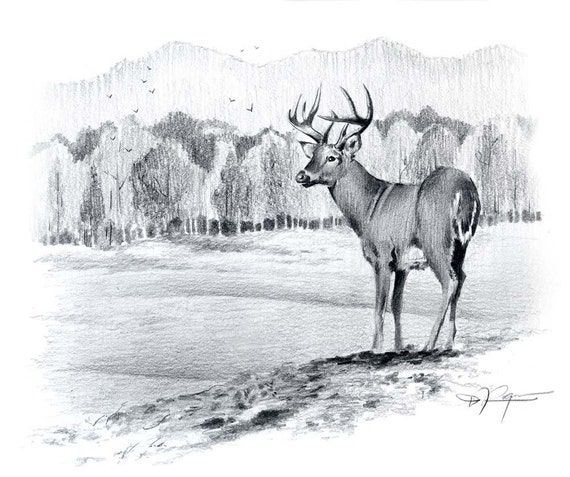 Image De Art Deer And Drawing