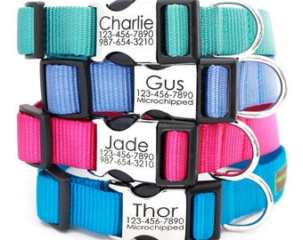 Metal Engraved Buckle Dog Collar - Personalized with 21 Webbing Colors to Choose From