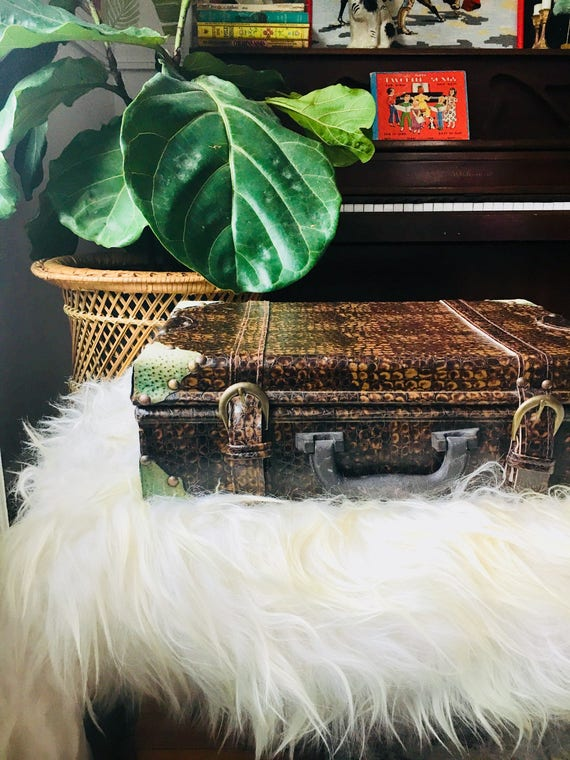 Vintage Mid-Century Alligator Luggage - RARE 1950s Alligator Leather Luggage with Suede Corners