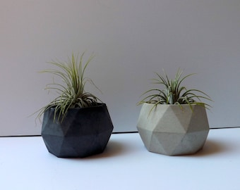 circular geometric cement planter // desk accessory // wedding favor // unique gift // air plant // concrete planter // birthday gift