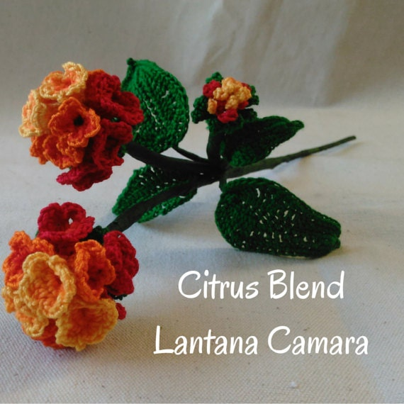 Crochet Flower Lantana Camara Pattern Crochet Flowers