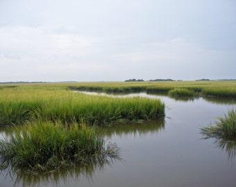 Marsh on Cumberland Island, GA,  8 x 10 fine art photo, signed