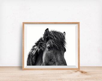 Black Horse Print, Physical Print, Icelandic Horse Wall Art