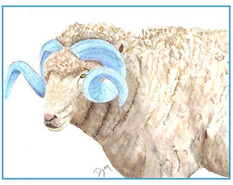 UNC Mascot Rameses Note Cards