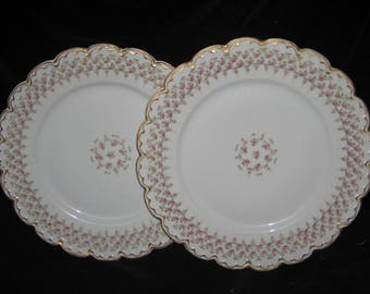 TWO ANTIQUE Theodore Haviland Limoges Dinner Plates
