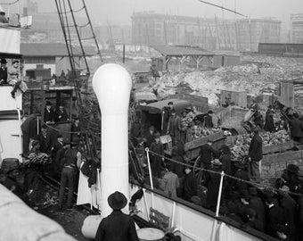 Unloading a Banana Steamer, Baltimore c 1905 copy of vintage photograph