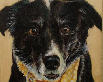 Custom Pet Portrait/ border collie / father's day gift / doggywood