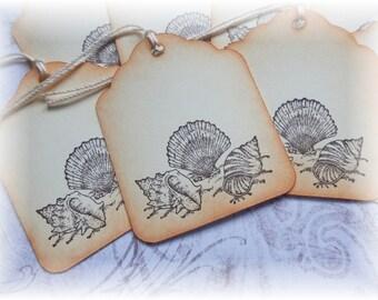 Sea Shells - Ocean - Beach - Gift / Hang Tags (8)