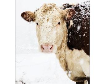 Cow Print, Cow Art, Winter Art, Farmhouse Decor, Winter Snow Art, Large Wall Art, White Simple Style Farm Country Decor, Fine Art Print