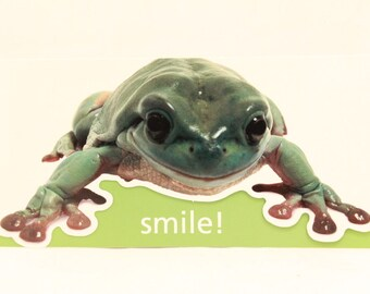 NEW! Vintage Frog Happy Birthday by Andrews McMeel. 1 Card and Envelope included.