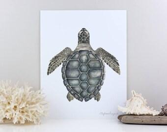 "Sea Turtle Watercolor Print - Giclee Art Print - 5"" x 7"", 8"" x 10"", or 11"" x 14"" - Kemp's Ridley Sea Turtle - Watercolor Painting"