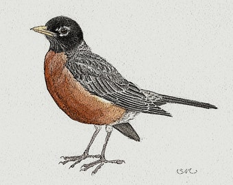 Spring Robin print 5x7 with PS filtering