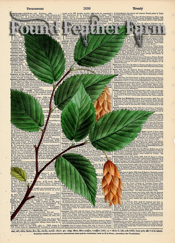 """Vintage Antique Dictionary Page with Antique Print """"Iron Wood Leaves"""""""