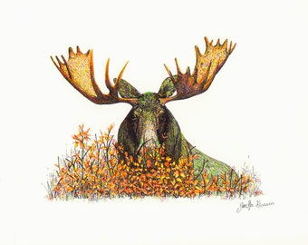 Moose Print: Hiding