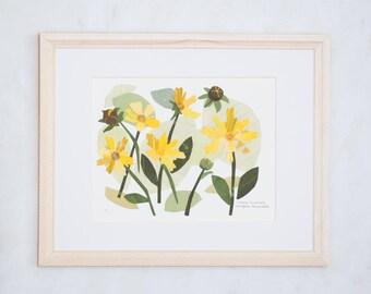 Art Print of Original Wildflower Collage- Lobed Tickseed Wildflower
