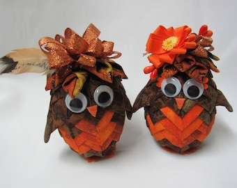 Mr. or Mrs. Owl