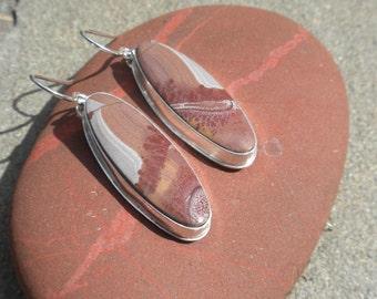Sonoran Scenic Jasper Earrings in Silver