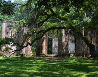 Landscape Photography-Old Sheldon Church-Art, Southern, Nature, Abandoned, Historic, Ruins, Travel, South Carolina, Vestiges, Fine Art Photo