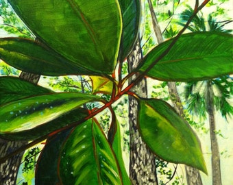 North Florida Jungle (painting, swamp, river, woods, springs, magnolia, pine trees, humidity, sunlight, nature, flora, landscape, forest)