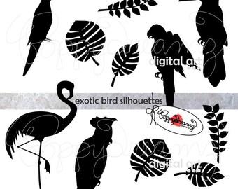 Exotic Bird Silhouettes: Clip Art Pack (300 dpi transparent png) Cockatoo Flamengo Toucan Macaw Jungle Exotic Bird Clipart Black & White