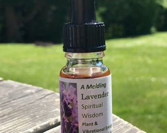 Lavender - Spitiual Wisdom (ascension group)
