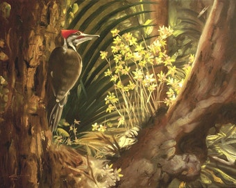 Pileated Woodpecker 11 x 17 print (image 10.5 x 14.25)  by artist RUSTY RUST / W-52-P