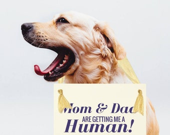 "Funny Dog Sign For New Baby ""Mom & Dad Are Getting Me A Human"" Pregnancy Announcement Maternity Photo Shoot Hanging Banner USA 1212 BB"