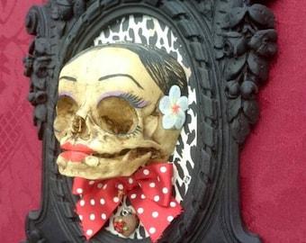 Skull picture. Pinup skull picture. Infant's skull. Newborn skull. Baby skull.