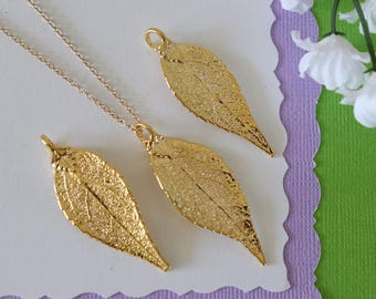 Gold Evergreen Leaf Necklace, Real Leaf Necklace, Evergreen Leaf, Gold Leaf Necklace, Long Leaf, Leaf Pendant LC231