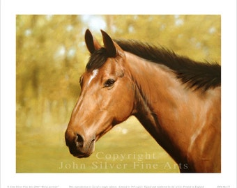 Horse Portrait. Limited Edition Equestrian Print. Personally signed and numbered by award Winning Professional artist JOHN SILVER. jsfa015