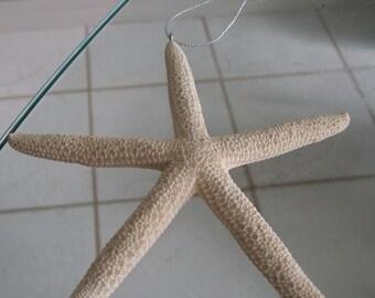 White Starfish Ornament