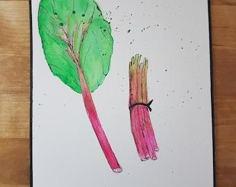 Spring plant: rhubarb