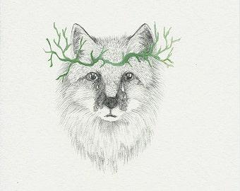 green wolf, giclee print, fine art